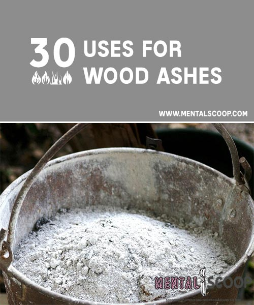 What To Do With Fireplace Ashes Fireplaces