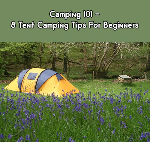 Camping In The Backyard Safe : Camping 101  8 Tent Camping Tips For Beginners  Mental Scoop