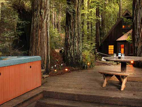 Tranquil Redwood Cabin Mental Scoop